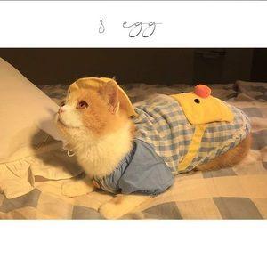Pets Cute Duck Fux Coat